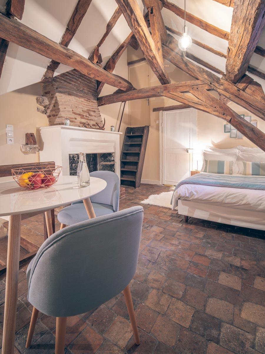 Vue portrait chambre d'hôtes à Blois - 1